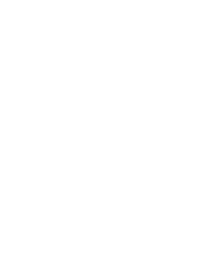 Get your Trend On